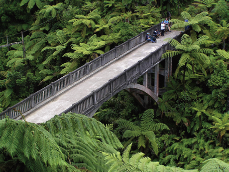 Whanganui National Park in New Zealand
